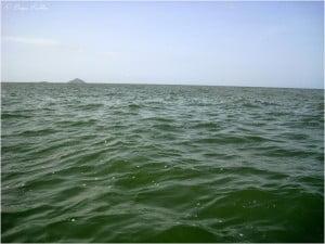 Индия, 4 элемента. Вода.